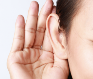 60f8e5f3fba Interview all musicians should see - Musician's Hearing Services